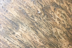 marmorino-plaster-specialist-laroyalart.com8